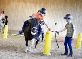 Cirque et chevaux - été/automne - 6/16 ans